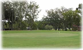 Play golf in Pine Ridge
